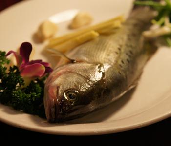 【海鲈鱼】海鲈鱼的做法_海鲈鱼怎么做好吃