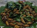 金丝蛹炒小白菜的做法