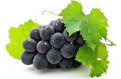 吃葡萄的好处和坏处