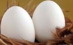 胆结石能吃鸡蛋吗
