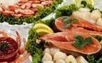 吃什么鱼补脑 最健脑的六种鱼