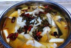 白汤水煮鱼的做法视频