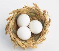 【鸡蛋的营养价值】鸡蛋的营养成分