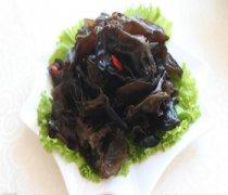 【黑木耳的药用价值】黑木耳的功效与作用_黑木耳红枣汤怎么做
