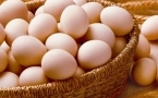 胆固醇高能吃鸡蛋吗