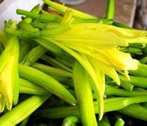 【凉拌黄花菜的做法】凉拌黄花菜的功效和作用_凉拌黄花菜的营养价值