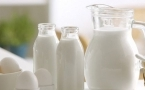 风热感冒可以喝牛奶吗