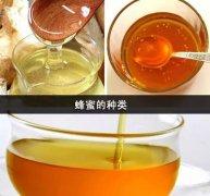 冬天蜂蜜功能和用法整合