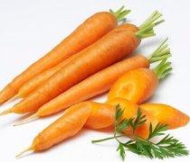 【胡萝卜的营养价值】胡萝卜的功效作用_胡萝卜的做法