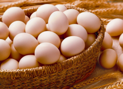 早餐为什么要吃鸡蛋