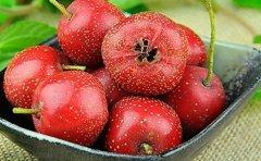 老人吃什么水果可以降血压