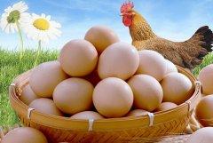 鸡蛋的做法大全