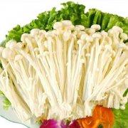 【微波炉烤金针菇】微波炉烤金针菇的做法_金针菇的选购