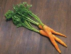 胡萝卜怎样吃最有营养 巧妙搭配保健康