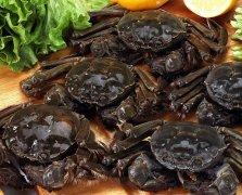 怎么挑选螃蟹 吃货们需注意的螃蟹挑选妙招分享