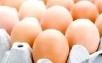 肾结石能吃鸡蛋吗