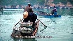 寻味潮海鲜——潮汕海鲜的舌尖之旅