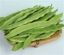 【炒扁豆的功效与作用】扁豆的种类有哪些_扁豆怎么做好吃