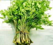 【野芹菜的功效与作用】野芹菜的营养价值_野芹菜怎么做好吃