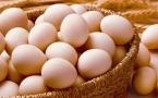 肾炎能吃鸡蛋吗