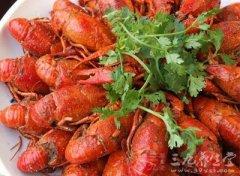 孕妇能吃龙虾吗 孕妇吃龙虾的好处