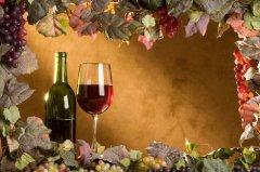 葡萄的营养价值及功效,葡萄酒的酿制方法