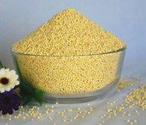 【小米薏米粥的功效】小米薏米粥的营养价值_小米薏米粥怎么煮