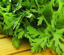【腌芹菜叶】腌芹菜叶的方法_腌芹菜叶的注意事项