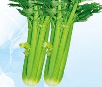 【西芹菜的做法大全】西芹菜的搭配禁忌_西芹菜的适宜人群