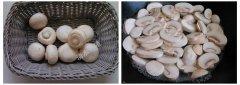 口口都鲜脆的鲍汁口蘑的做法