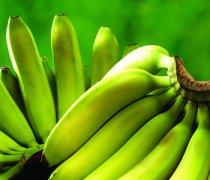【香蕉不熟能吃吗】香蕉的催熟方法_香蕉的营养价值
