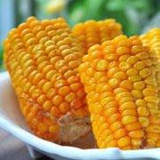 香烤玉米棒的做法