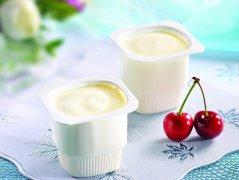 自制酸牛奶